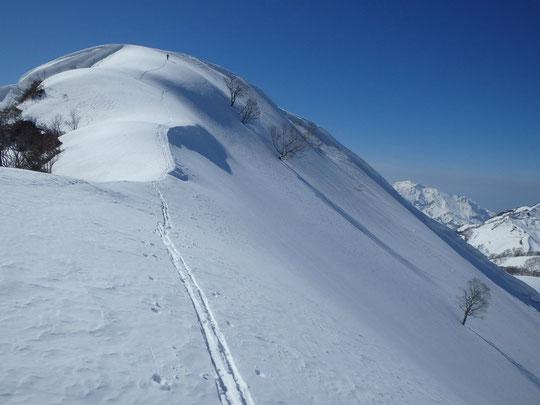 容雅山山頂と北桑沢上部