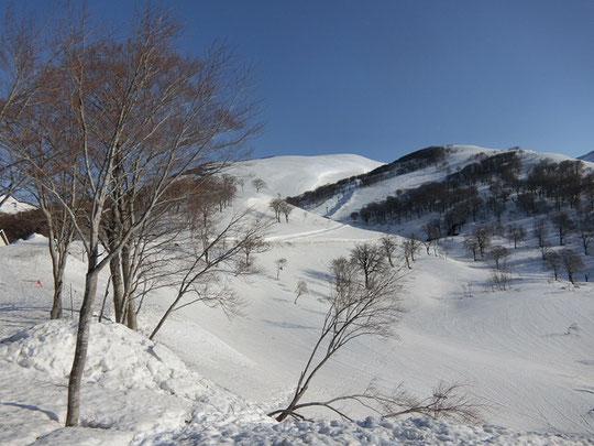 姥沢より月山方向を望む