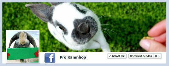Pro Kaninhop auf Facebook