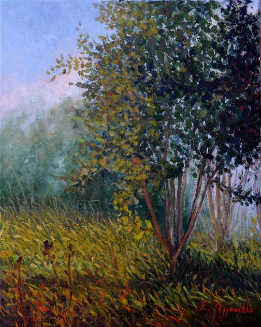 Autunno - olio su tela - 40 X 50 - 2011