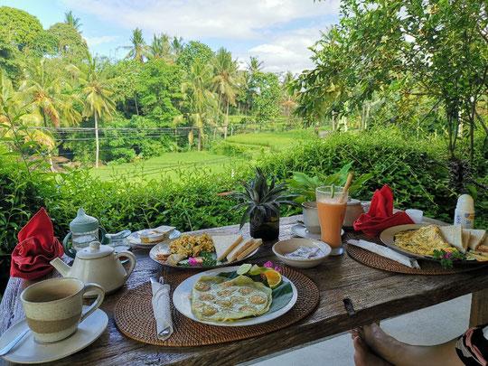 Ubud Bali Villa Inang