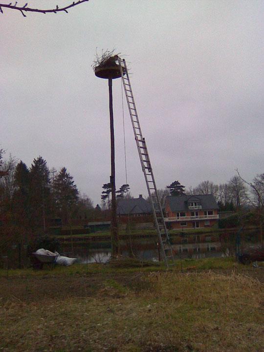 Vorbereiten des Nest 27 bei der Familie Lüder 06.03.09