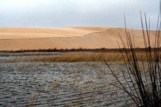 Las dunas de Corrubedo