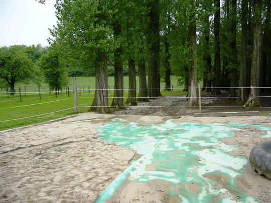 Aber bei unseren Stallnachbarn: ein Großteil des Sandpaddocks wurde leergespült :-(