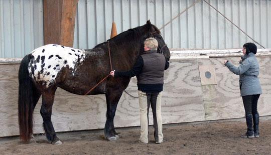 Mit Kurti bei der Handarbeit - Jenny erklärt.