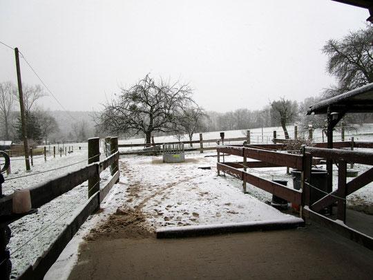Der erste Schnee im Winter 2014 :o)