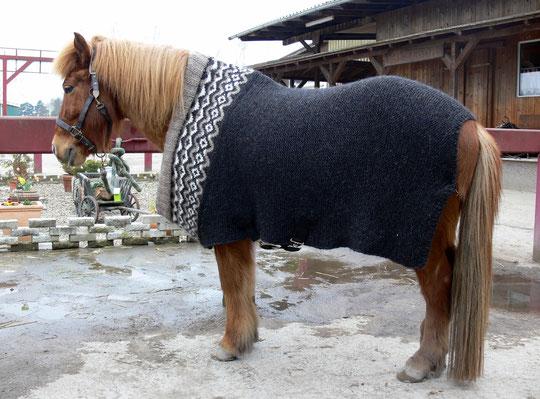 Yndi mit Tinas selbstgestricktem Isländer-Pullover. :-) Toll!!!!!!!