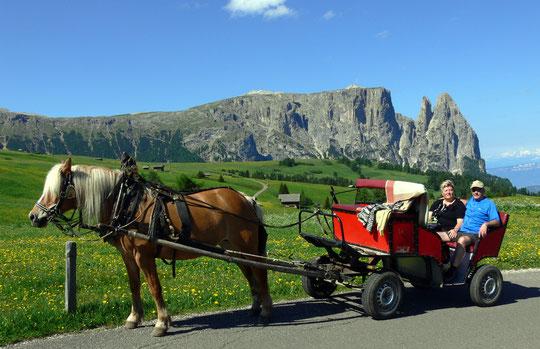 War ja klar: Pferdekutsche mit Hafi :-)