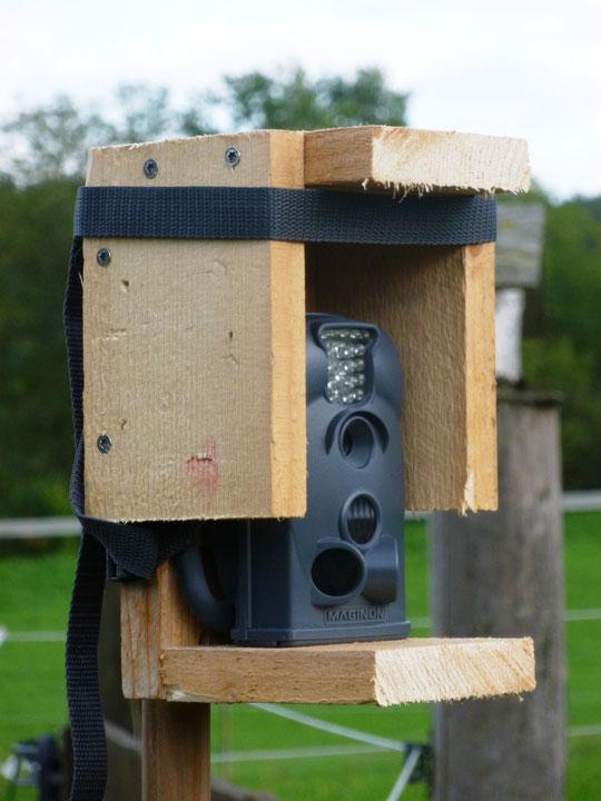Wettergeschützte Wildbeobachtungskamera
