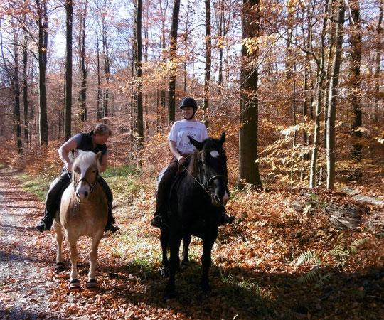 Nach dem Pferdewechsel im Gelände