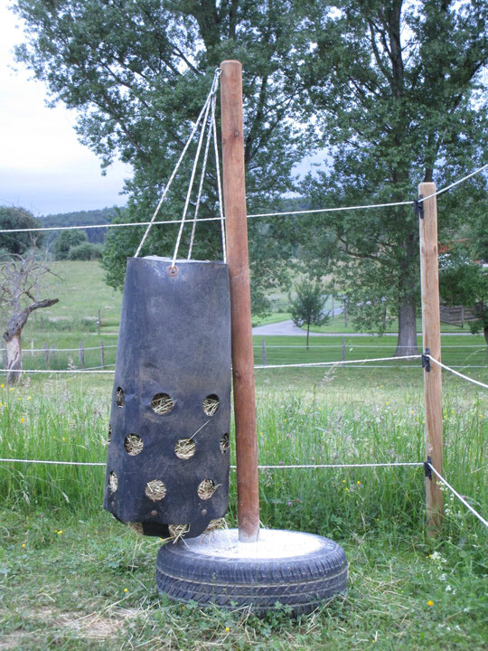 Der Heutoy, aufgehängt am neu betonierten Holzpfosten, der nun im Longierzirkel steht