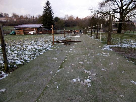 Der Trailweg nach dem ersten Schnee: alles palletti.