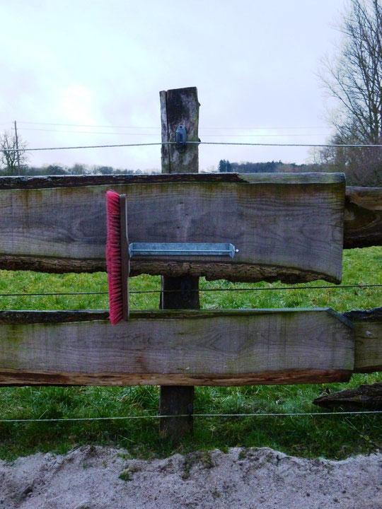 Hier kann ein Knabberholz oder auch ein Salzleckstein angebracht werden - designed by Gerret :-)