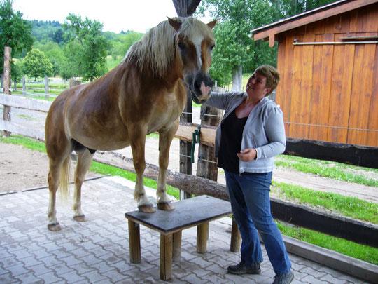 Großes Pony!!! :-)))