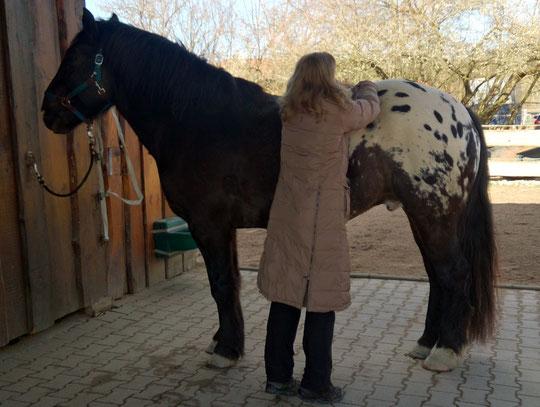 Kurti genießt Inas Behandlung
