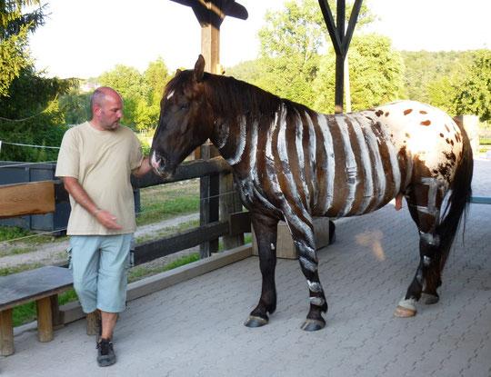 Wir haben ein Zebra!!! :-)