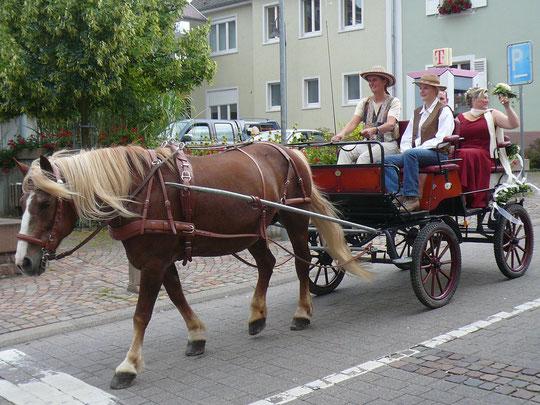 Unsere Hochzeitskutsche mit Schwarzwälderin Lisa - damit gings mit dem Autokorso hintendran eine Runde durchs Dorf