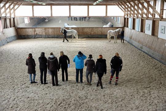 In der Reithalle beim Blauen Reiter in Baiersbronn