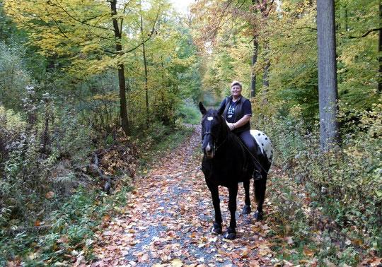 Der Punkt und ich im Herbstwald