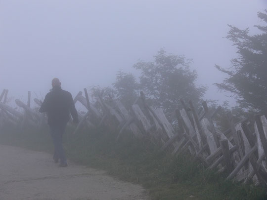 Wandern im Nebel auf der Rigi