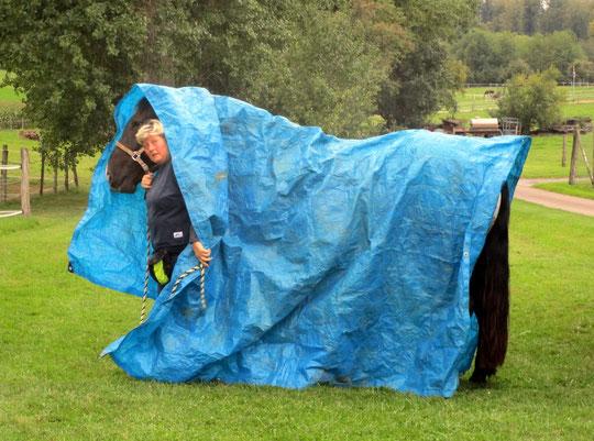 Komplett-Regenschutz ;-)
