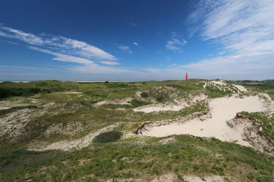 The island of Schiermonnikoog in summer, June 2014