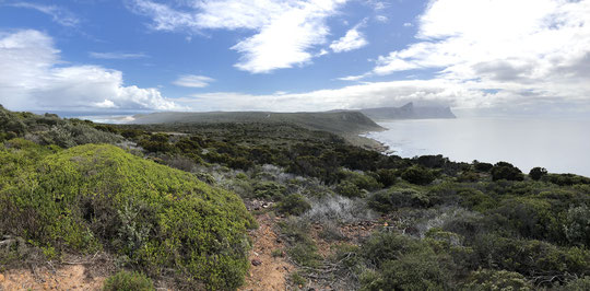 Cape Point NP (click to enlarge)