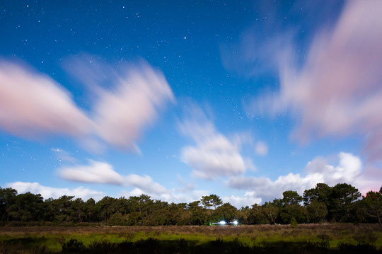 Starry sky over the pasture with temporary ponds. © Matthijs Hollanders
