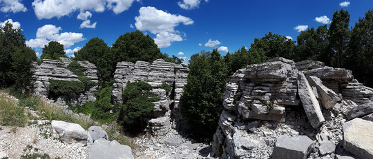 The Stone Forest at the Vikos Gorge.