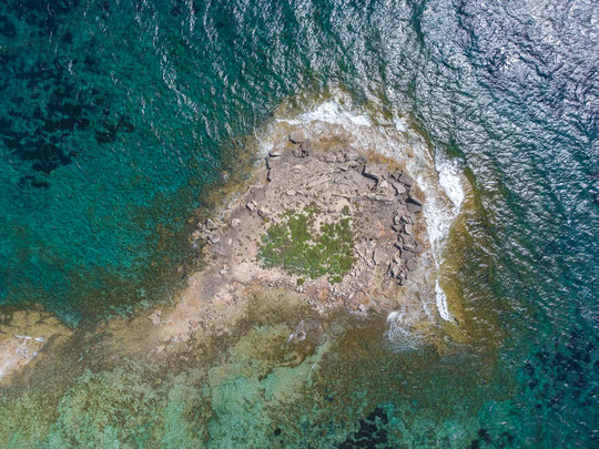 Lilord's Wall Lizard habitat from above, a tiny islet! © Wouter Beukema