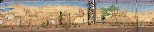 Cool street art in downtown Eilat. Click to enlarge.
