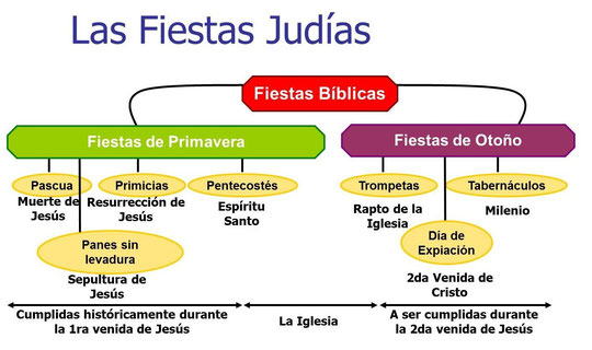 diagrama del tabernaculo para ninos