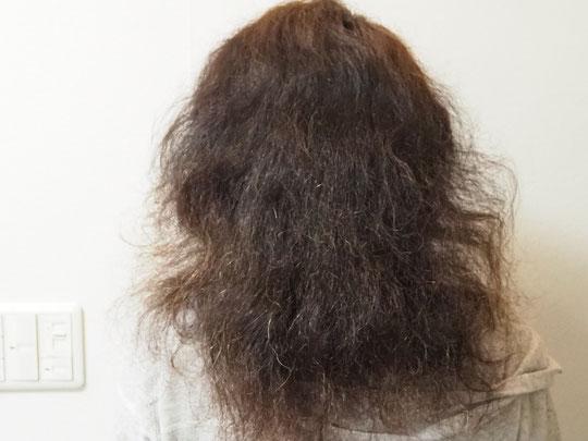 乾燥は進みすぎてはいて癖は強いが、本来の髪質は悪くない