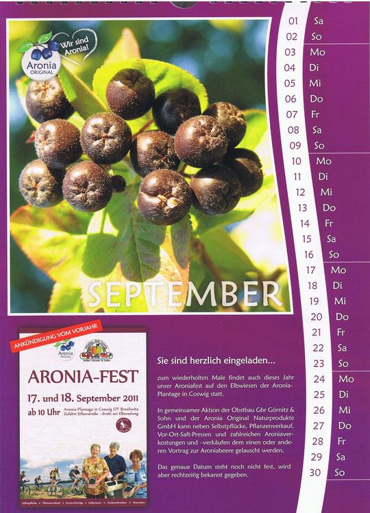 Aronia September 2012