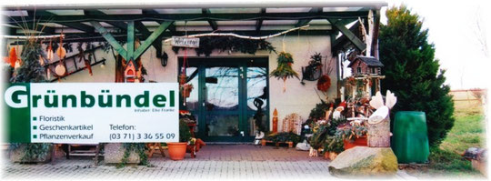 Grünbündel Chemnitz
