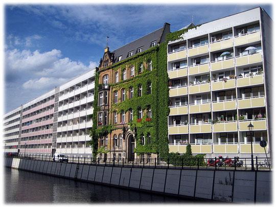 Bilder von Plattenbauten in Mitte, dazwischen steht vereinzelt noch ein Altbau aus der Zeit vor dem Weltkrieg. Das Bild zeigt einen Altbau, der mit Efeu umrankt ist. Bilder von Wohnhäusern in der DDR.
