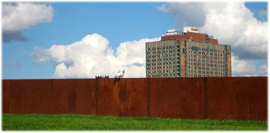 Ein Bild vom Bettenhaus der Charite in Berlin Mitte. Das Foto zeigt zwei Tauben die das Bettenhochhaus bewundern. Große Teile der Charite sind sanierungsbedürftig!