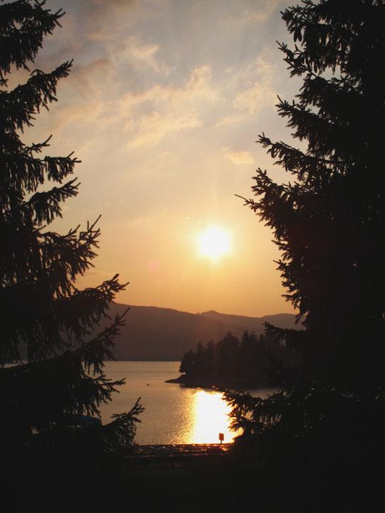 forêt schluchsee couché de soleil lac allemagne