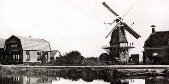 Molen 'De Pionier' aan wat tegenwoordig de Coevorderweg in Slagharen is.