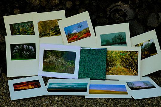 Denis Barrau auteur d'expositions sur les arbres er les métiers anciens de la ruralité