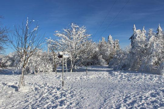 Wandern im Schnee bei sonnigen Wetter - einfach herrlich!