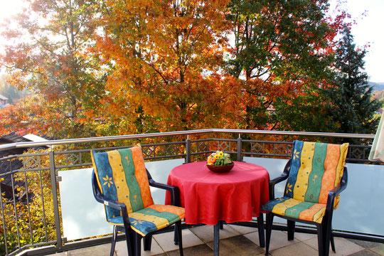 Genießen Sie diesen Logeplatz mit Blick direkt auf herrliche Eichenbäume, was besonderst im Herbst einmalig ist.