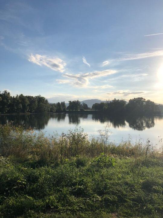 Der wunderschöne Bodensee