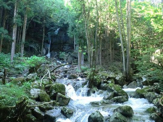 塔ノ沢の水量も増した般若の滝の様子 (前の記事「戻り梅雨」の画像と比較してください)