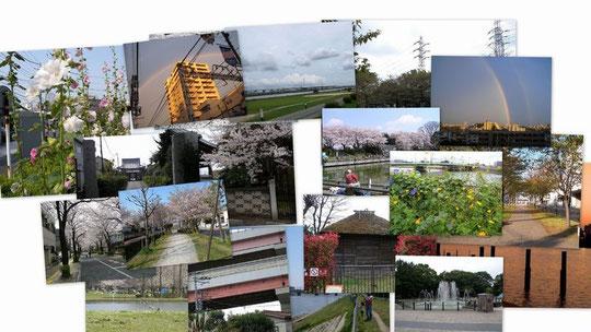 「葛飾の街」写真展コラージュ
