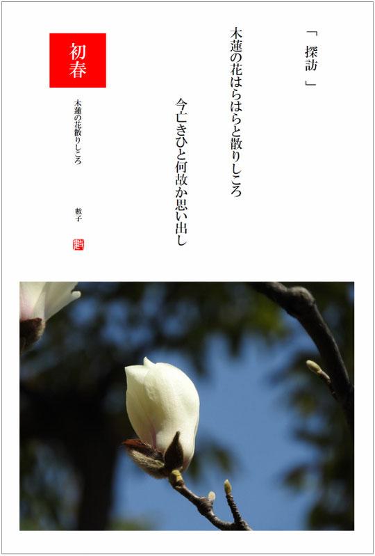 2017/03/26制作 庭の木蓮