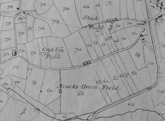Extract from the Tithe Map of Yardley, 1843 (Birmingham Libraries)