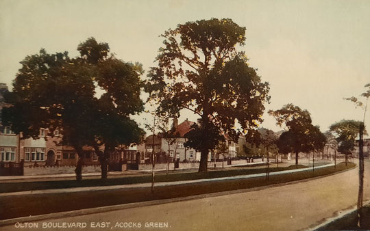 A 1950s view