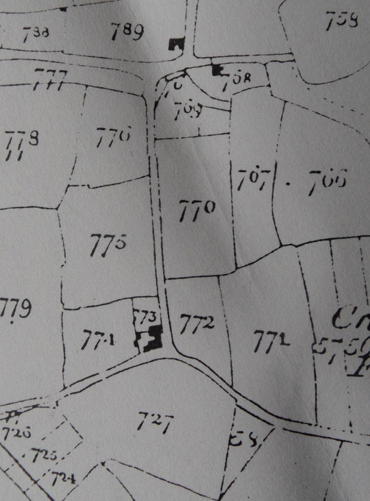 1840s Tithe map extract (Birmingham Libraries)