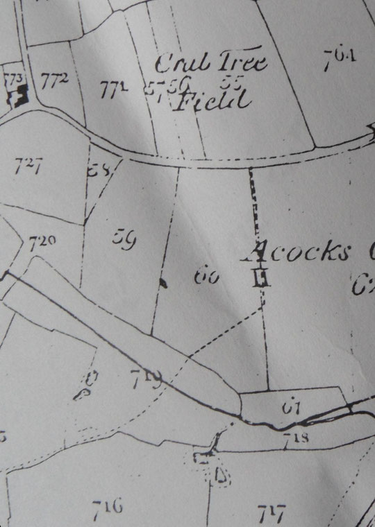 1843 Tithe map extract, north is to the right (B'ham Libraries). Cook owned fields 57 and 60.